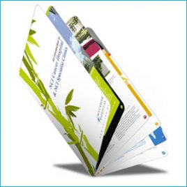 Folded-Leaflets (DL 4pp)150GSM – Silk